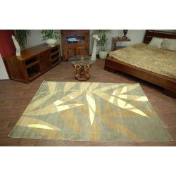 Teppich PAPILIO DISCO 6666 grün