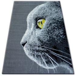 Teppich BCF FLASH 33323/170 - Katze