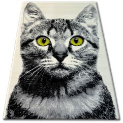Teppich BCF FLASH 33319/160 - Katze